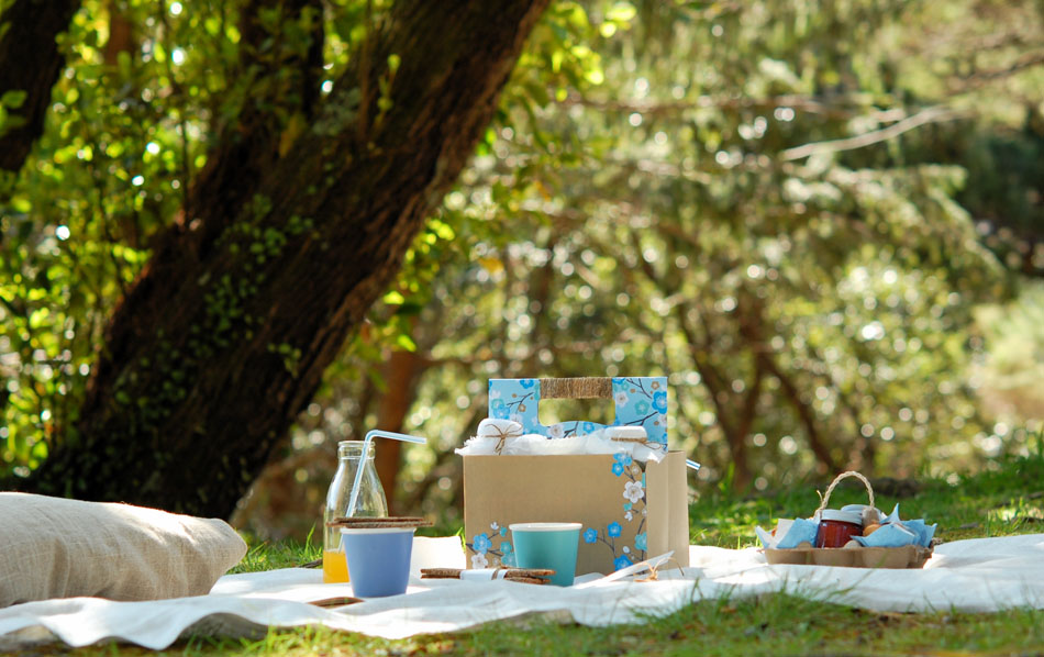 A Spring Picnic For Two From Vanille Down Under